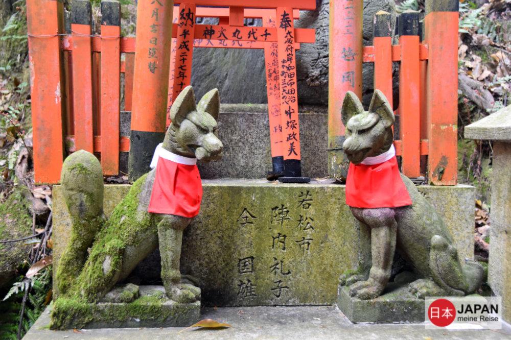 Die Füchse - Boten des Gottes Inari
